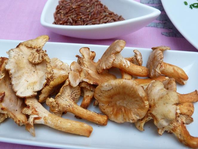 Arròs salvatge-tofu1