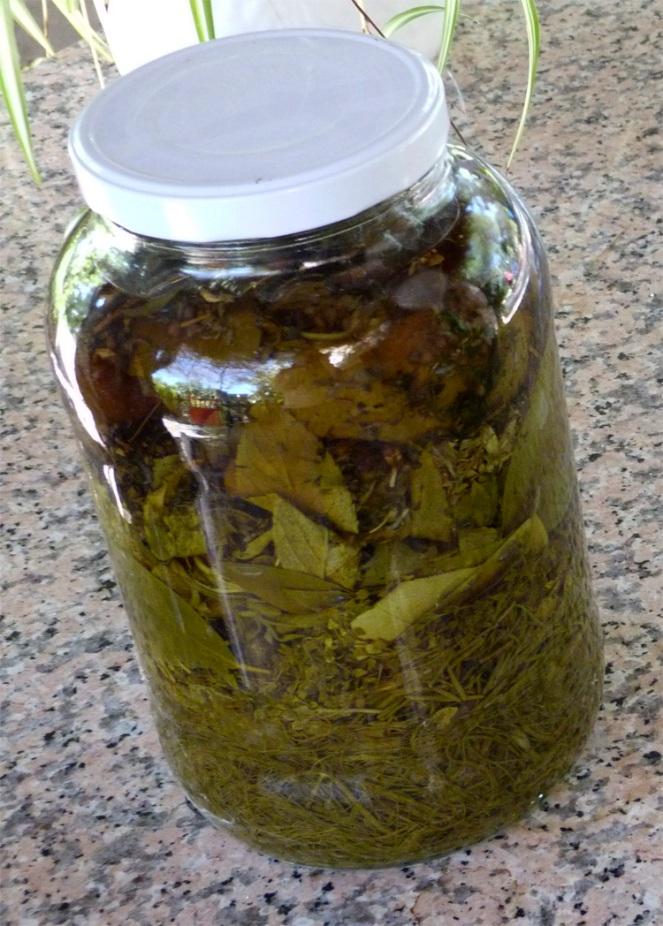 Licor herbes1